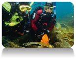 PADI_Dry_Suit-Diver