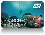 SSI_Search_&_Recovery